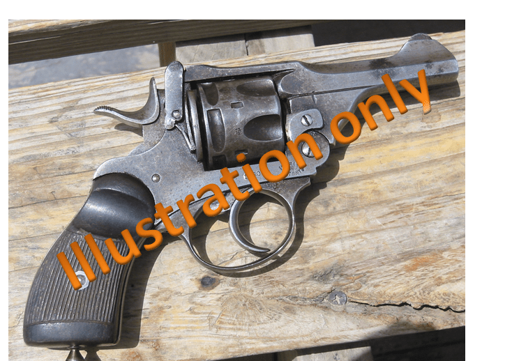 1 arrested with country pistol near Gulab Bagh area