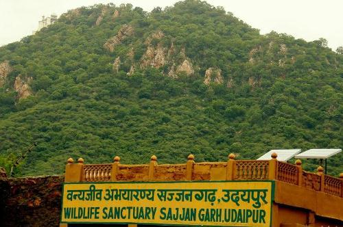 New time schedule for Sajjangarh Bio-park and sanctuary
