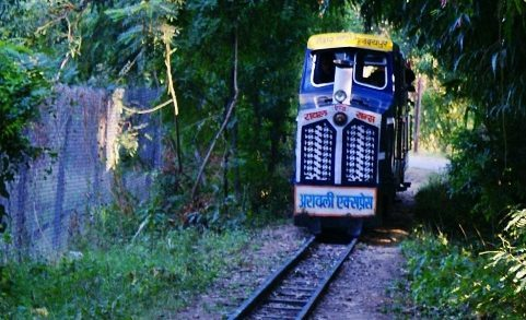 Toy train to make a comeback at Gulab Bagh