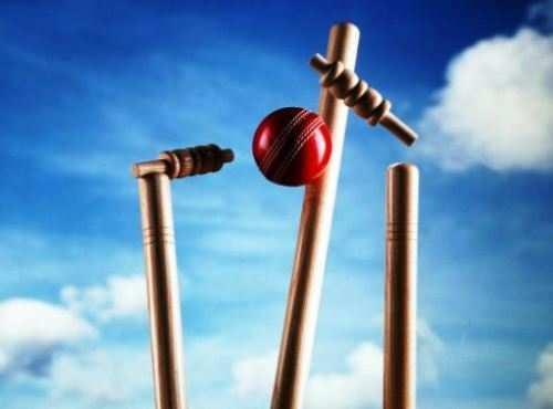 पश्चिम क्षेत्र अंतर विवि क्रिकेट में सुखाड़िया यूनिवर्सिटी का शानदार प्रदर्शन