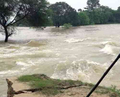 Flood like situation in many areas of Rajasthan