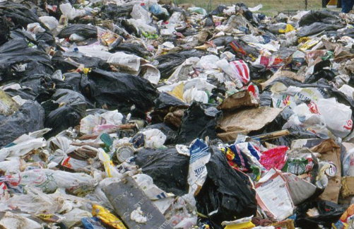 Udaipur landfill to get a complete green makeover