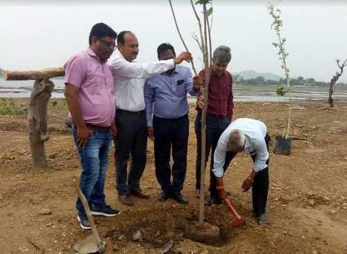 Hindustan Zinc CSR   Tree Plantation at Fatehsagar lake in association with UIT at Udaipur