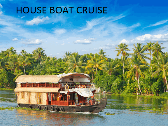 Romantic places to visit for a honeymoon in Kerala