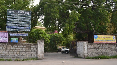 Politics gripping the future of Udaipur Veterinary Hospital