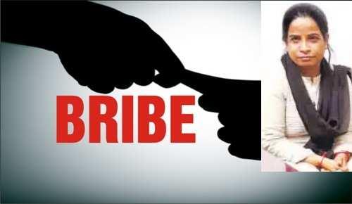 Computer operator in DEO arrested in bribery case