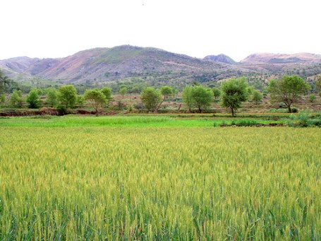 Land regularization rates to go up in Udaipur