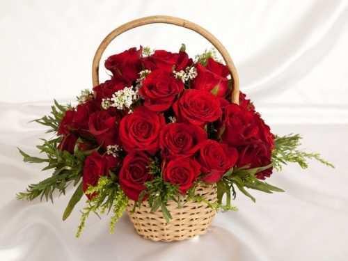 6- Glamorous Flowers in Full Bloom