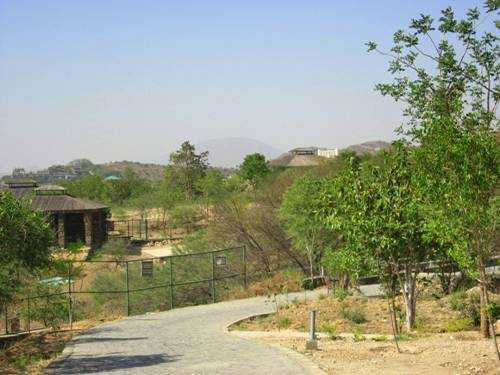 [Photos]Sajjangarh Bio Park captured through reader's camera