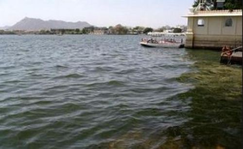Water released from Aakodra dam | Fatehsagar, Pichola to fill up soon