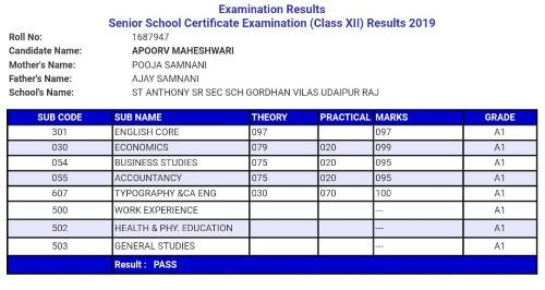 CBSE Class XII Results | St Anthony's Apoorva Maheshwari tops Udaipur in Commerce stream