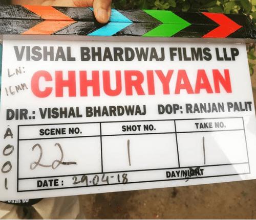 Shooting of Vishal Bhardwaj's movie Chhuriyaan begins in Udaipur