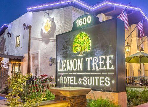 Lemon Tree to open its first upscale hotel in Udaipur