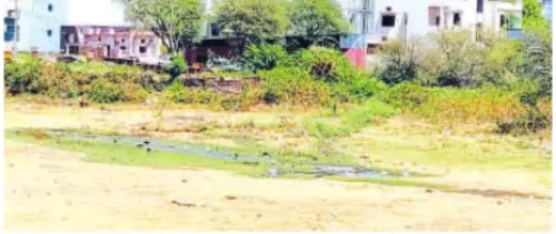 Contaminated water is polluting Roopsagar